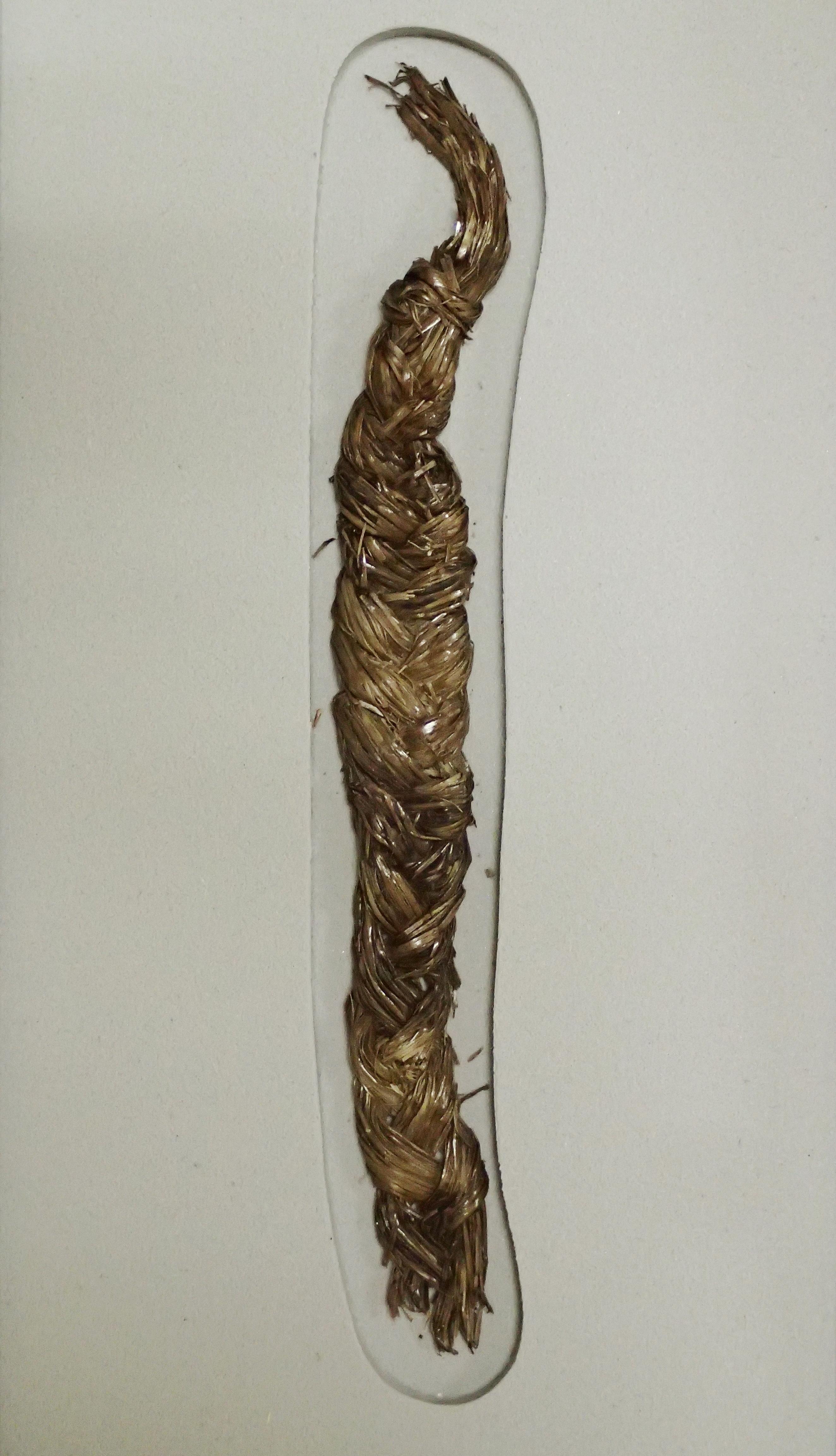【重要文化財】三つ組みの太縄(鳥浜貝塚、当館所蔵)